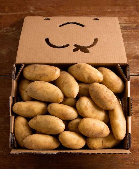 Patatas cosechadas y envasadas artesanalmente